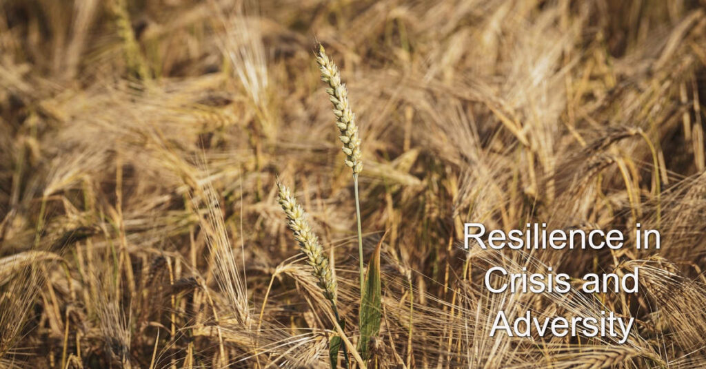 Resilience in Change